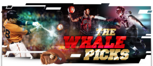 The Sports Betting Whale Review